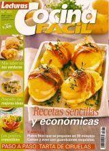 Libros De Recetas De Cocina Gratis Pdf   131 Recetas Sencillas Y Economicas Pdf 1417744361 Jpg Libros Pdf