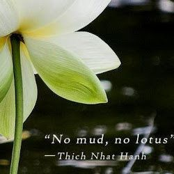 Thich Nhat Hanh Self Compassion Lotus