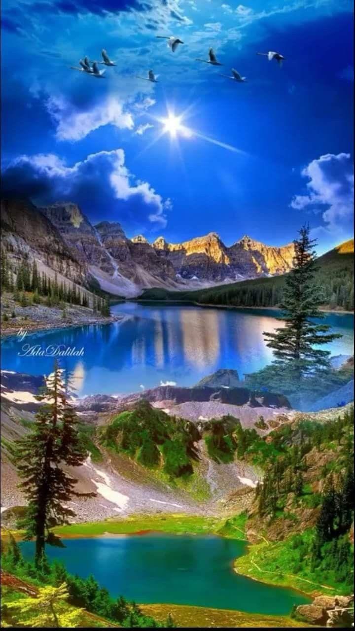 Pin By Sheri Harshman On It's A Beautiful World