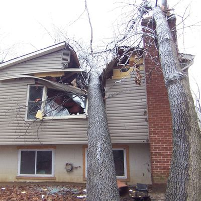 We Ll Make This Recovery Process Easy For You Call To Make The Claim Then Call Us We Will Be There For The Adjustment To Damage Restoration Wind Damage Tree