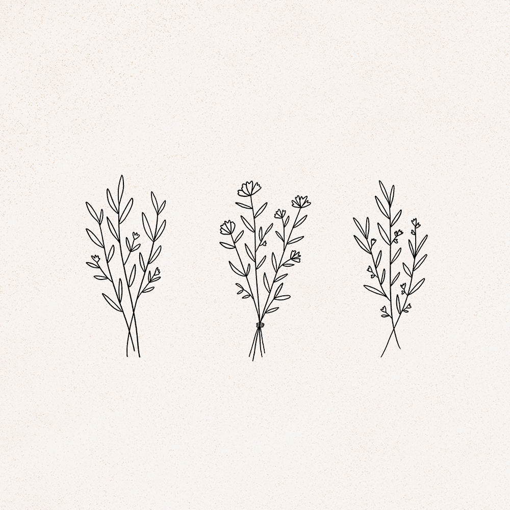Delicate Floral Plant Line Drawings Graphics By Minna May Design Simple Line Drawings Line Art Drawings Floral Drawing