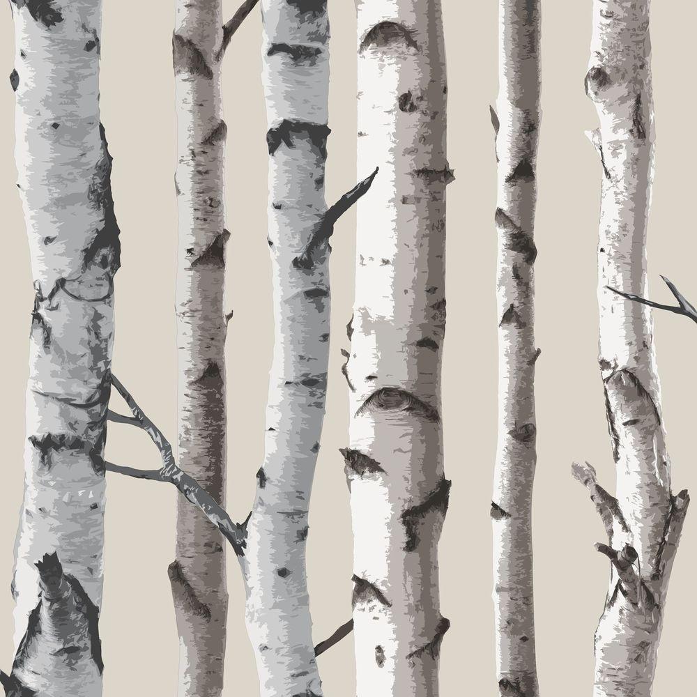 Tapete birkenwald wanddeko zum ausdrucken und for Tapete birkenwald