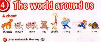 الإنجليزي سادس إبتدائي الفصل الدراسي الثاني Mouse Rat Giraffe Baby Mobile