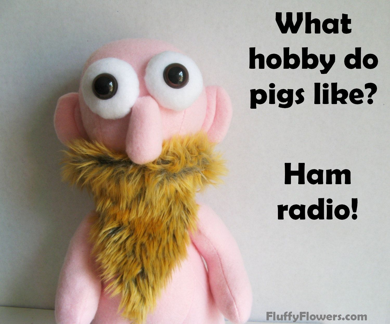 cute & clean pig ham radio kids joke for children