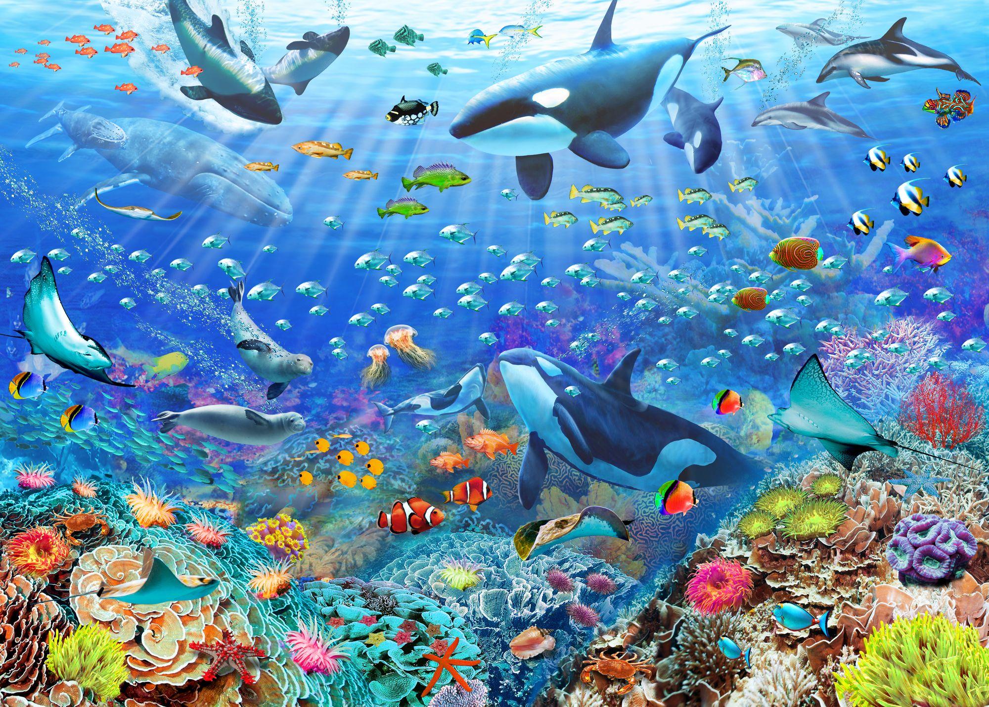 Underwater Scenery Mural, Scenery wallpaper, Wall murals
