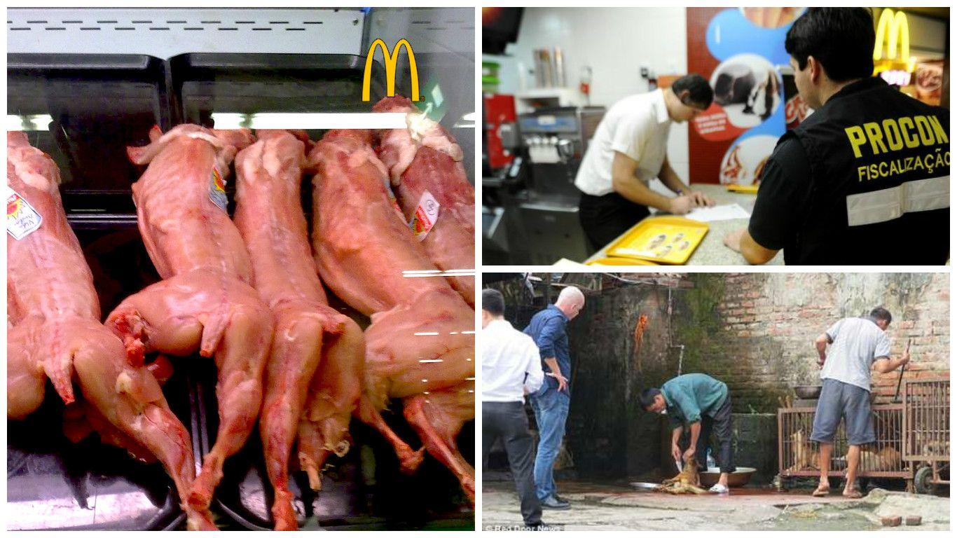 Rusga em McDonald´s no Brasil, termina com carne de cão encontrada na cozinha. Será mais um boato?