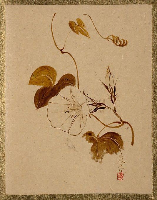 Morning Glory  Shibata Zeshin  (Japanese, 1807–1891)  Period: Edo period (1615–1868) Culture: Japan Medium: Album leaf; lacquer on pape