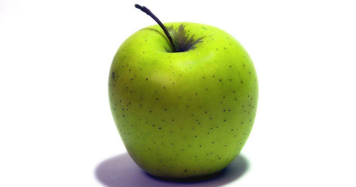 dieta del pollo arroz y manzana