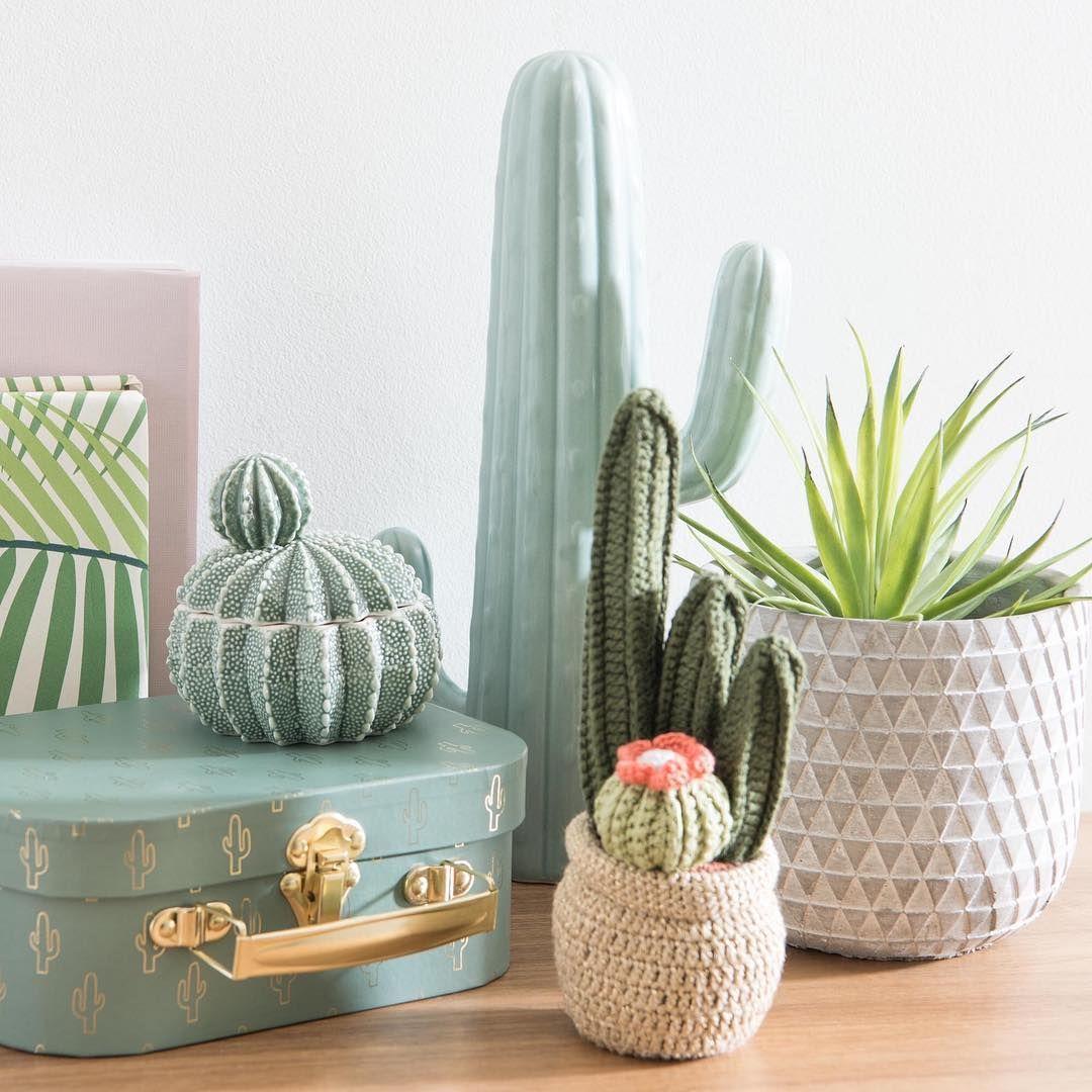 Cactus Interior Grande