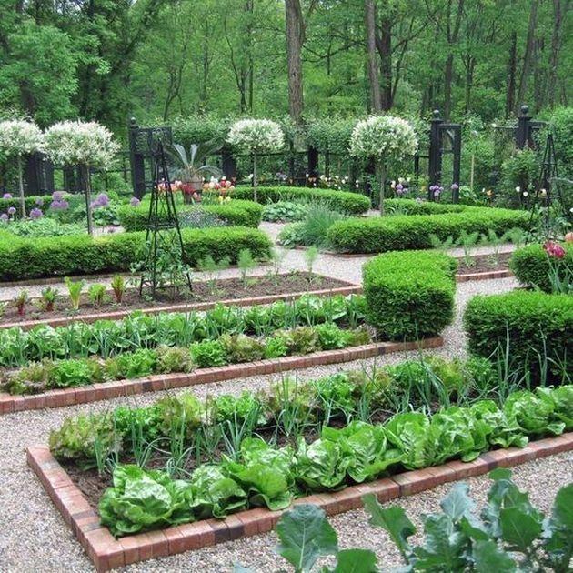 Small Vegetables Garden For Beginners_25 #gardeninglayout