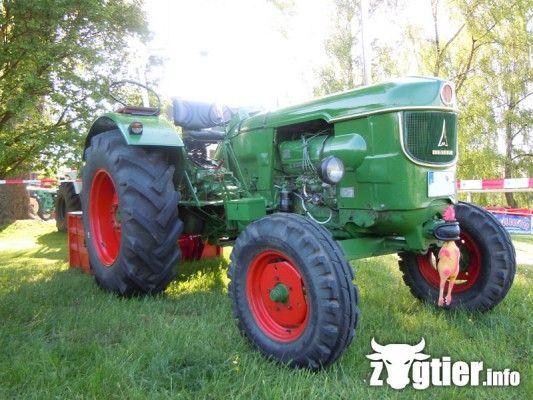 deutz d 6005 tractors traktor traktoren und oldtimer. Black Bedroom Furniture Sets. Home Design Ideas