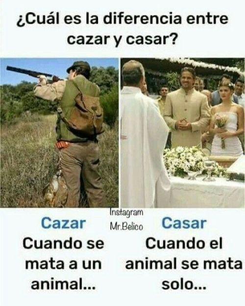 Frases Con Imagenes De Risa Http Enviarpostales Es Frases Con Imagenes De Risa 780 Chistes Memes Risas In 2020 Funny Spanish Memes Best Memes Memes