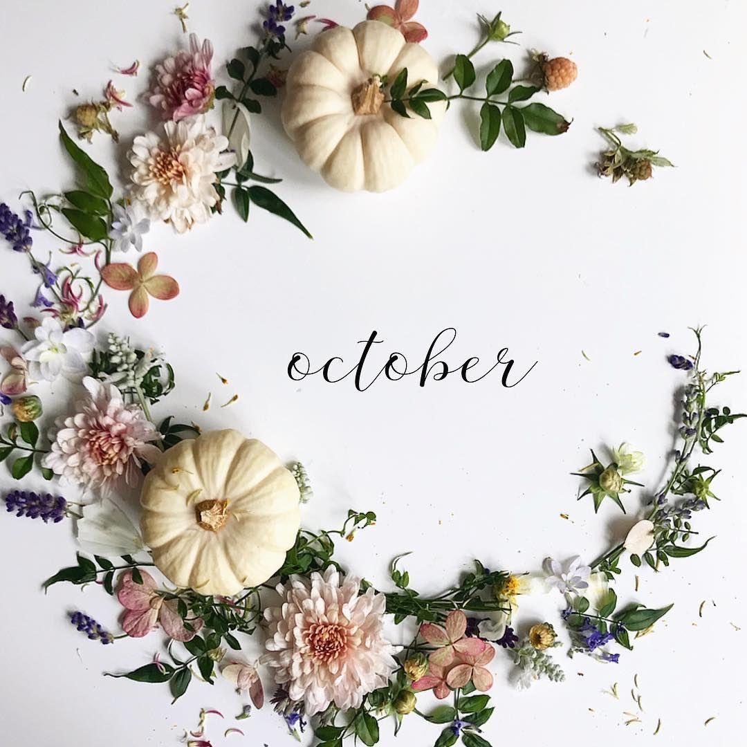 Hello October Month Flowers Hello October October