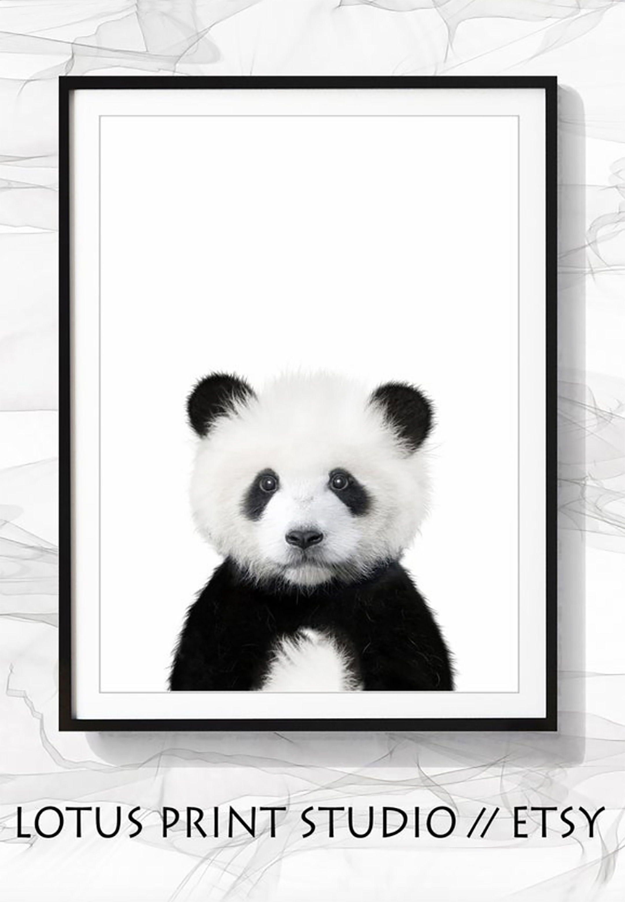 Panda Bear Print, Woodland Animal, DIGITAL DOWNLOAD, Panda Art, Baby Animal Art, Animal Wall Art, Nursery Decor, Nursery Wall Art, #246 #babypandabears