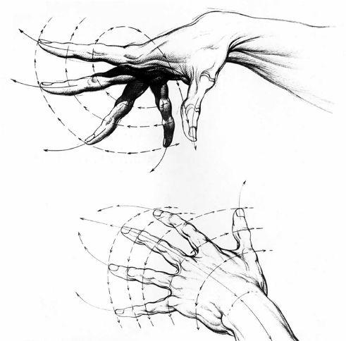 Burne Hogarth Drawing Dynamic Hands 14