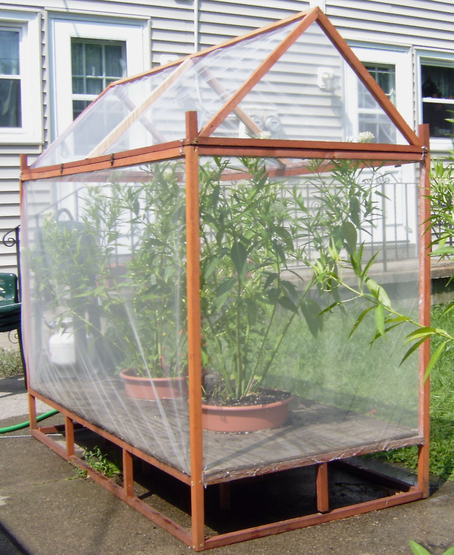 Caterpillar House Butterfly Houses Butterfly Cage Butterfly House