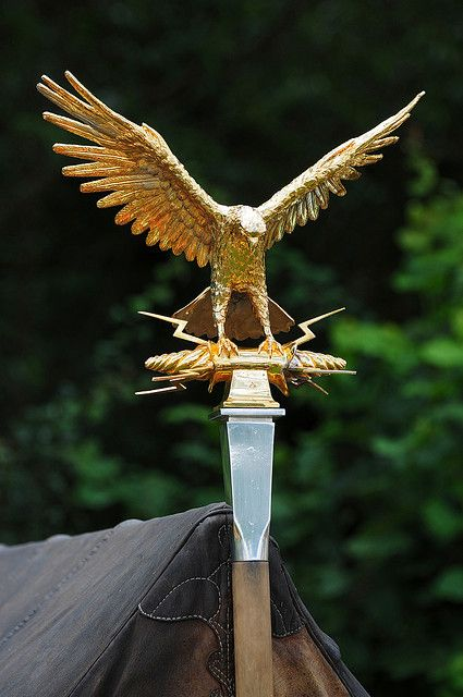 Aquila - Roman Imperial Gold Eagle Standard at Kelmarsh Festival of History by Steve Greaves, via Flickr