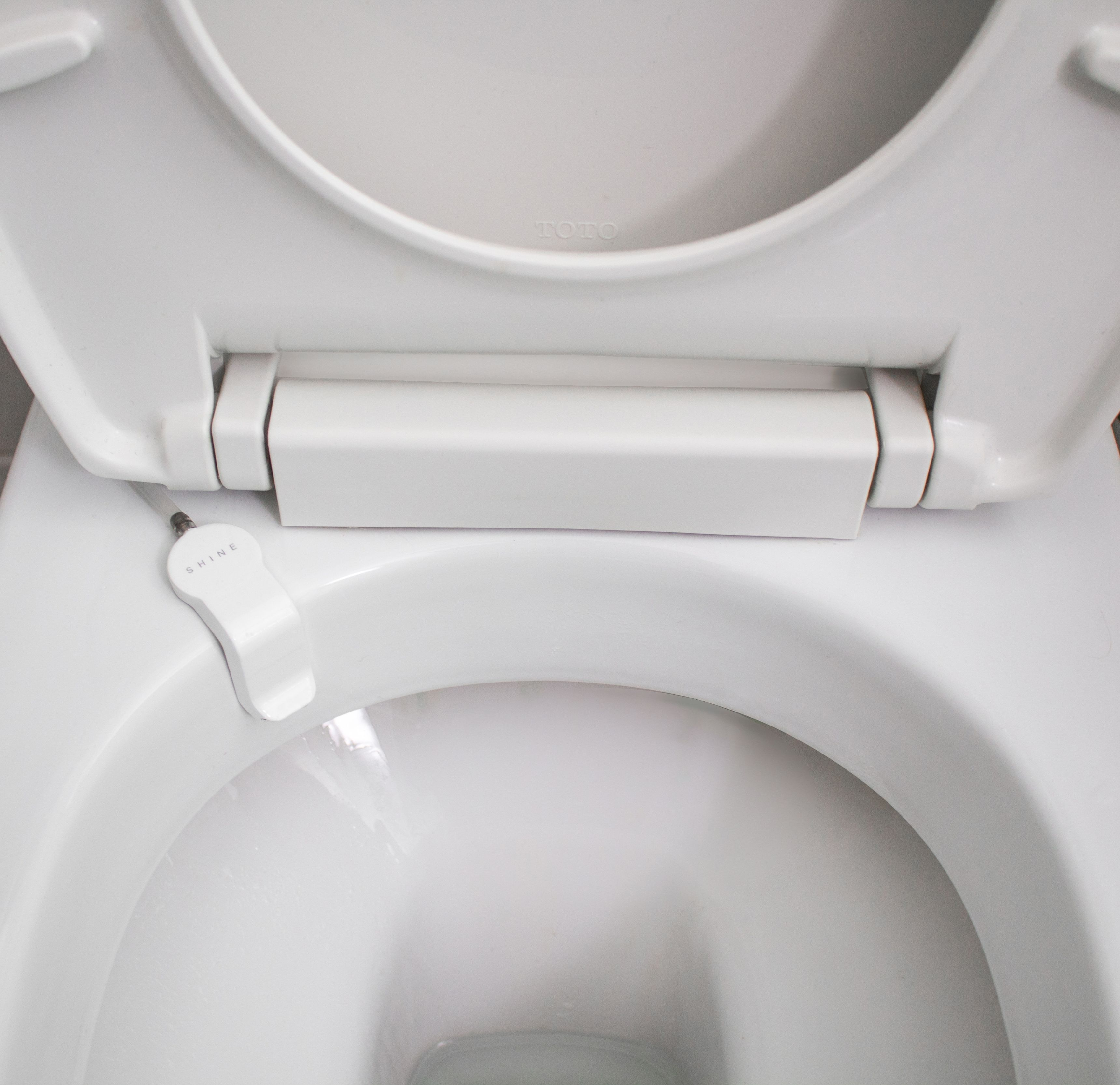 Keep Looking Down The Toilet Bowl You Will See Nothing But Your Beautiful Reflection Because Shine Flushes A In 2020 Clean Toilet Bowl Toilet Cleaning Toilet Bowl