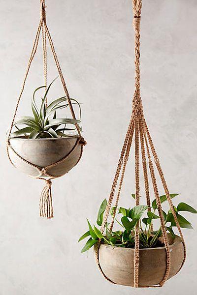 macetas colgantes ideas plantas colgantes interior maceteros colgantes jardines colgantes suculentas pantallas recicladas hamacas caramelo arreglos