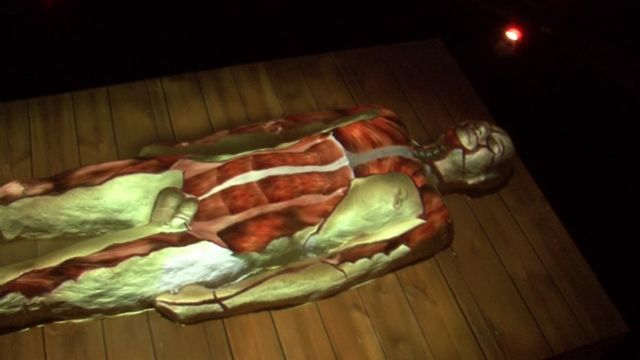 Exposition of 'Vesalius Revisited', an installation by Filip Sterckx, in the anatomical theater in Leuven during
