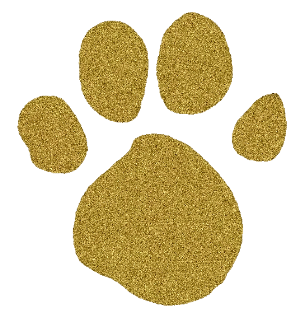Gold Pawprint Blue S Clues Gold Paw Print Clue Party