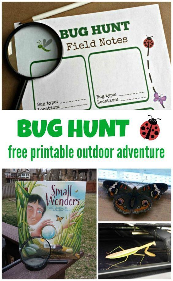 Bug Hunt Outdoor Activities For Kids W Free Printable Outdoor Activities For Kids Insect Activities Bug Hunt