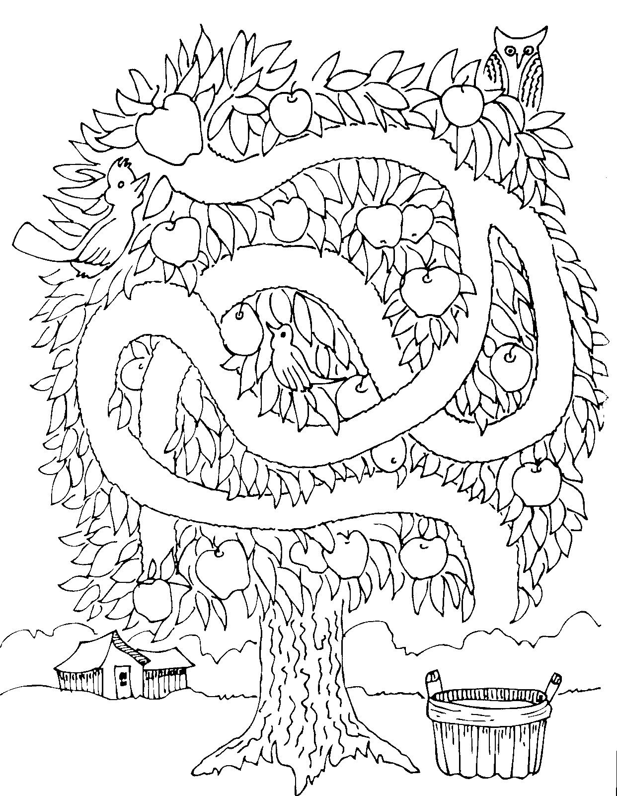 Coloring book page apple tree - Apple Tree Maze She