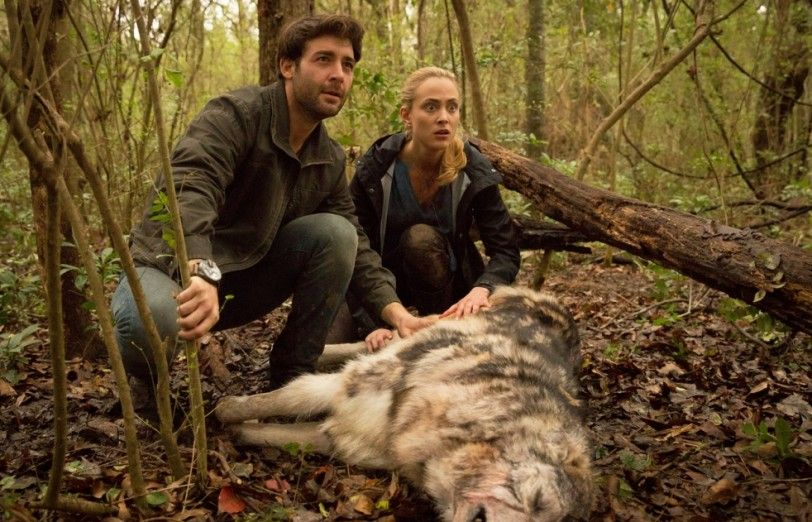 Zoo Cbs Google Search Zoo Tv Show Zoo Current Tv