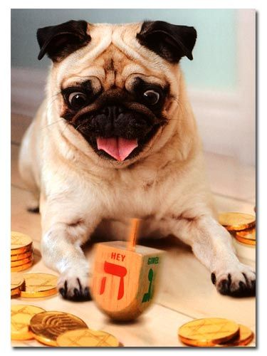 Pug and Dreidel Hanukkah Card $2.95