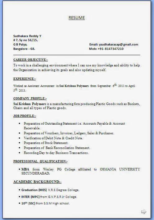 artist resume sample Sample Template Example ofExcellent Curriculum