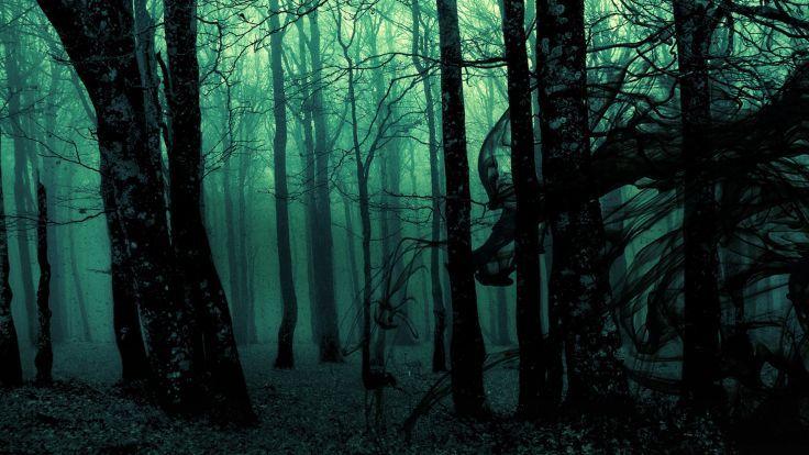Evil Forest Background
