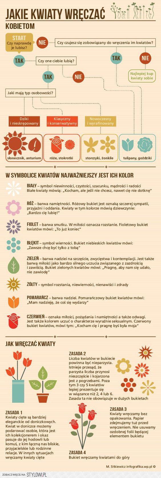 Pin By S Z Y N S Z Y L On Ciekawostki Editing Writing Writing Teaching