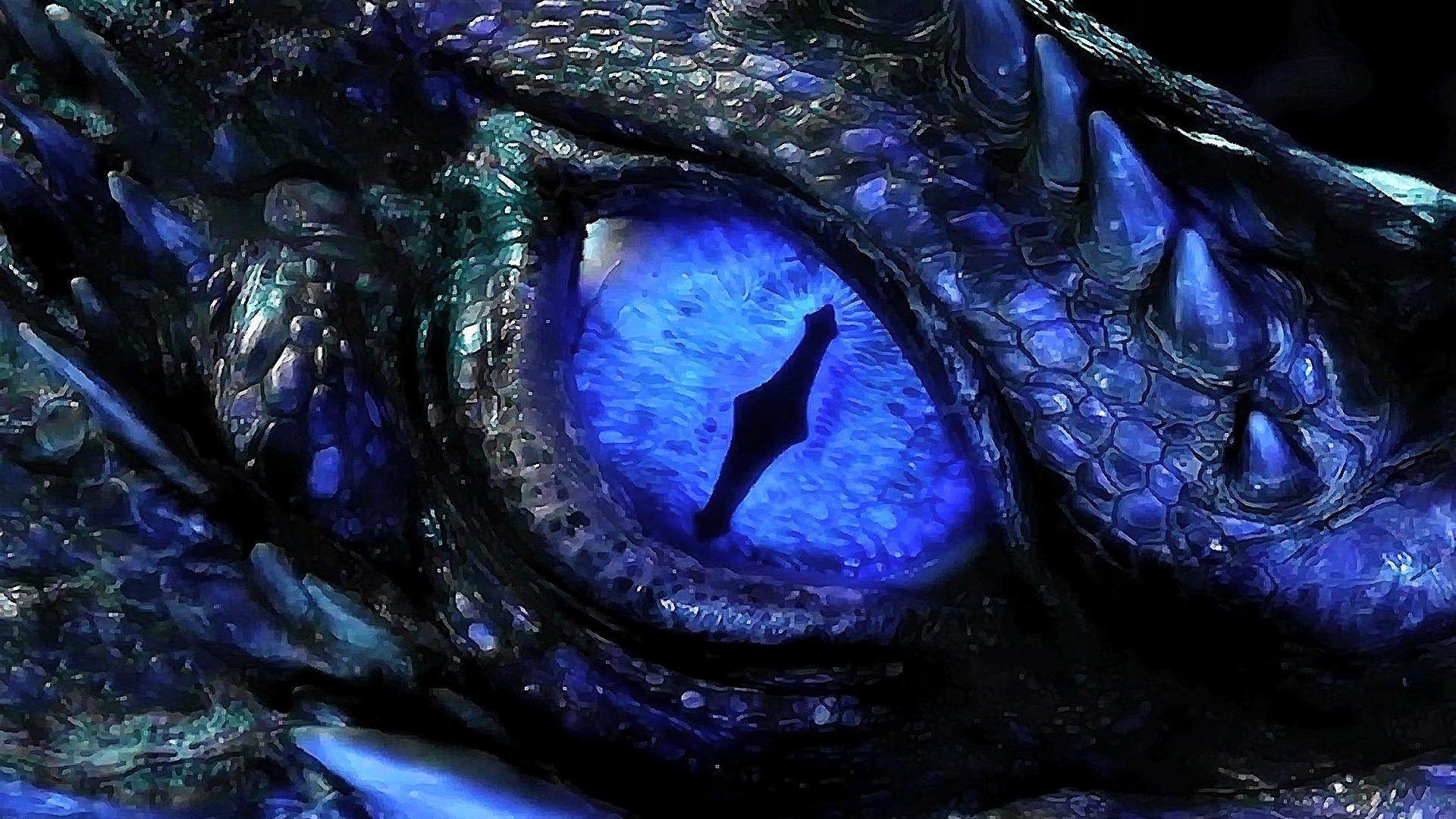 Fairy tail x reader galaxy dragon slayer the lab