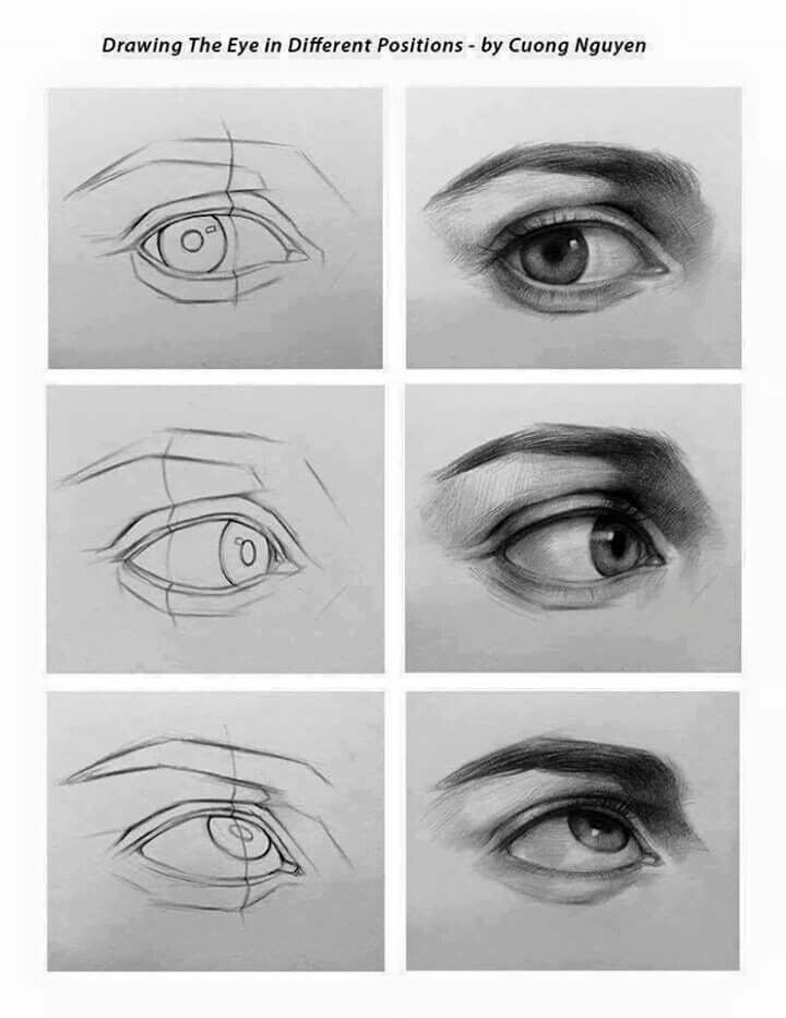 Eye In Different Positions Eye Drawing Pencil Art Drawings Eye Drawing Tutorials