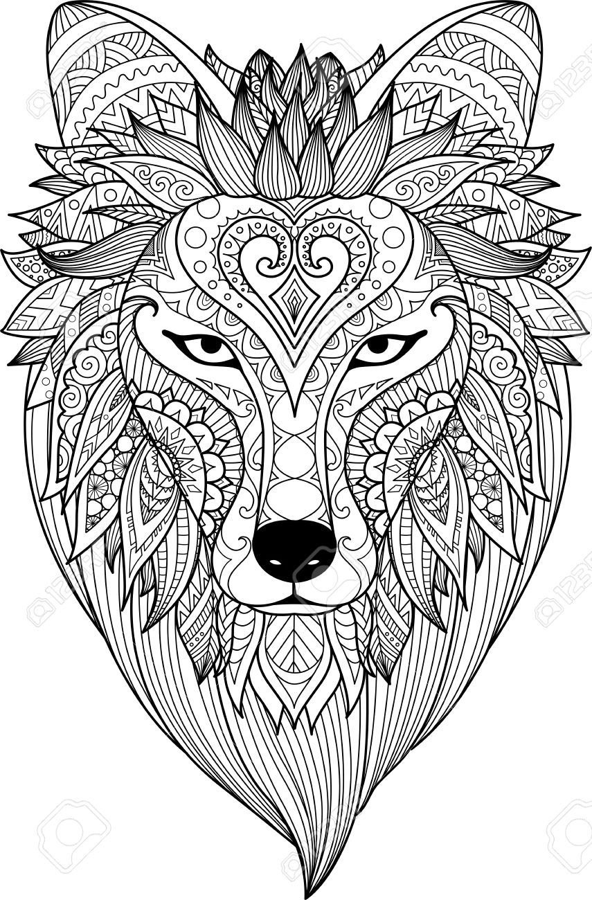Stock Vector Horse Coloring Pages Adult Coloring Animals Fox
