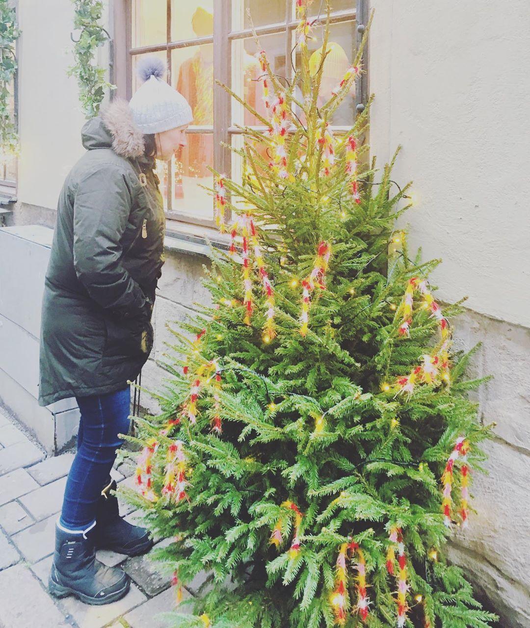 #oldtown #stockholm #stockholmchristmas #stockholmsweden #stockholm_insta #swede... #Christmas #christmasdecor #christmasdecorations #christmastree #holiday #instachristmas #instagood
