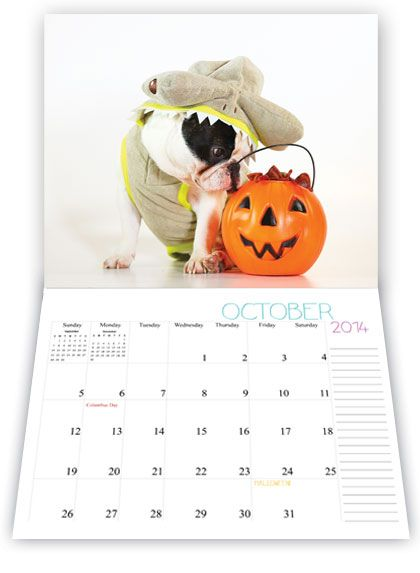 We are really excited about this calendar project. We are teaming up with Eric Klein Photography to get all brand new cute Manny, Leila, Frank, and Cooper photographs on your desks, refrigerators, work spaces, or wherever you want Manny! A fresh new cute picture every month!We're printing a very limited quantity and they are guaranteed to sell out fast!Great gift for the holidays or a birthday coming up!Presale Starts: 10.10.13Calendar Ships: 11.29.13