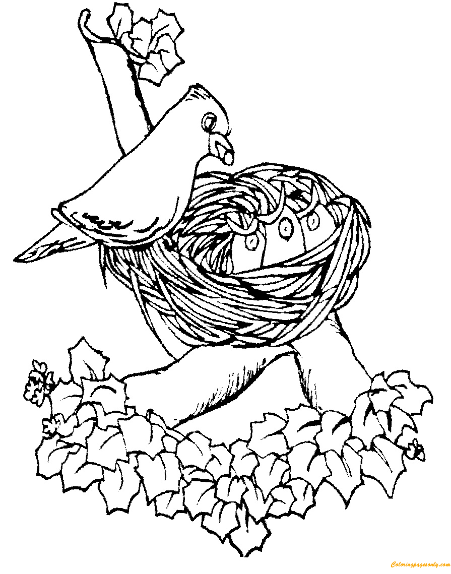 Mother Bird Feeding Cute Baby In The Nest Coloring Page Coloring Pages For Kids And Adults Here Is Animal Coloring Pages Bird Coloring Pages Coloring Pages