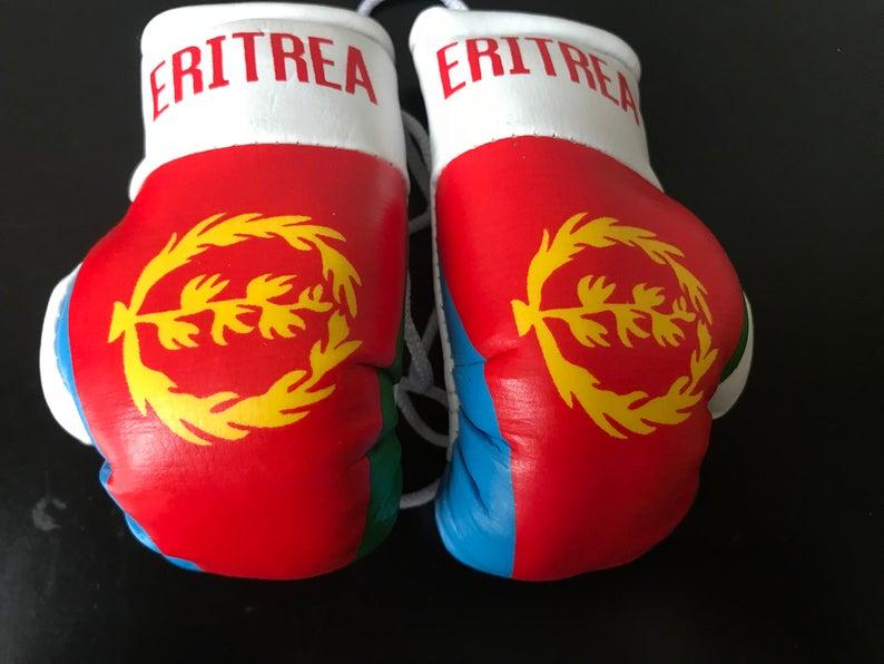 CAR Mirror Boxing Gloves Hanging Decoration KASHMIR Flag Office PAKISTAN Pair