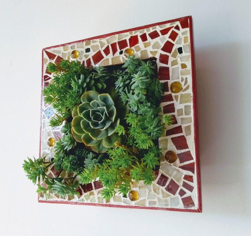 Mati-k, Marco en técnica mosaico y plantas suculentas / frame in ...