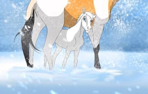 Pin By Ariana Davis On Custom Spirit Foals Spirit And Rain Animal Drawings Cartoon