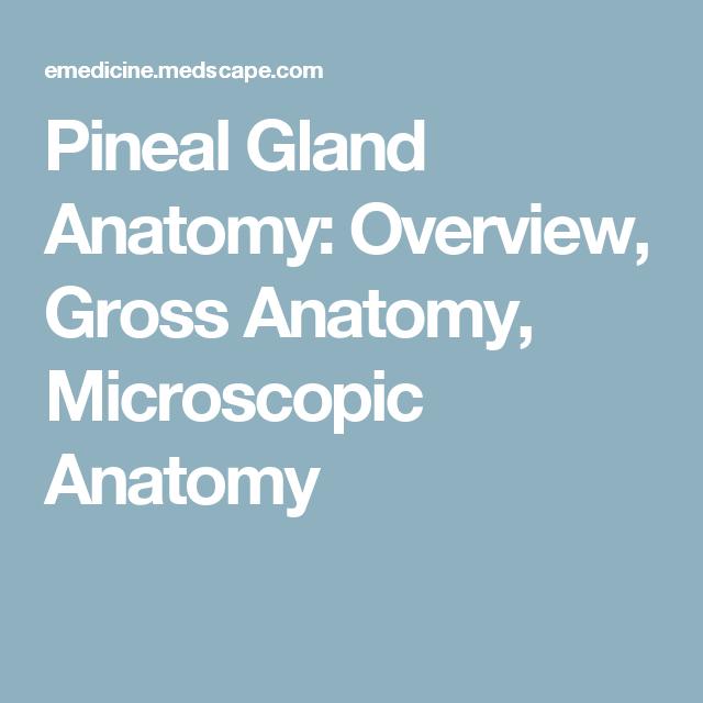 Pineal Gland Anatomy: Overview, Gross Anatomy, Microscopic Anatomy ...