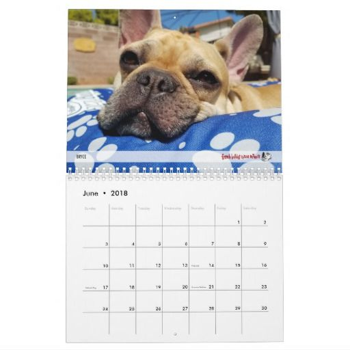 2018 Fbrn French Bulldog Calendar French Bulldog Bulldog
