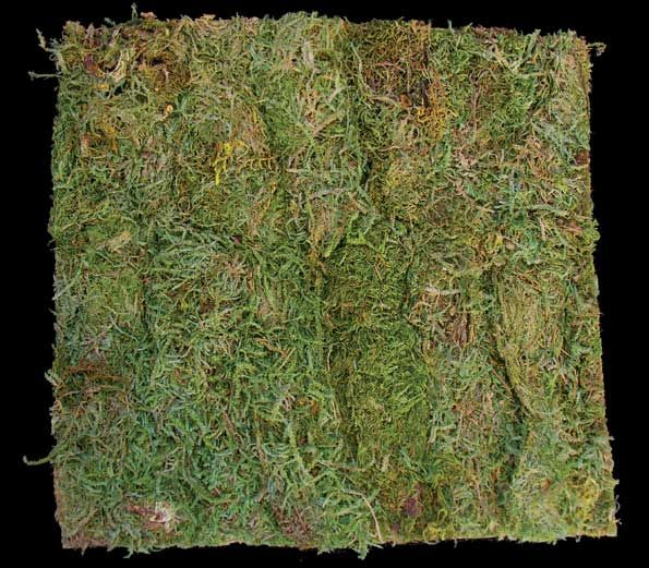 Artificial Moss Cloth For The Most Realistic Landscape Or Ground Cover