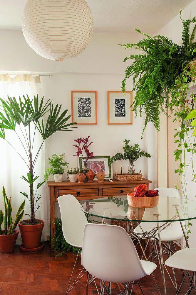 5 Motivos para Decorar com Plantas • MeuEstiloDecor
