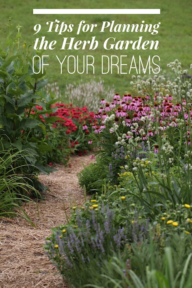 9 Tips For Planning the Herb Garden of Your Dreams is part of Beautiful Herb garden - As you peer into the future, imagine how you might interact with your dream garden  Take a moment to write down all the reasons you wish to grow herbs, and how you might incorporate their medicine and beauty into your life