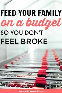 How to Feed Your Family on a Budget (so You Don't Feel Poor or Broke). I love this! She shares her best tips for feeding a family of 5 on a tight budget so that they don't feel poor. I need this for my family! Rice and beans is getting really old!