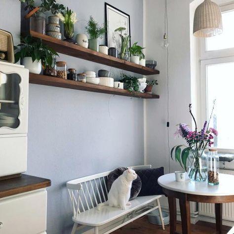 Liebste Küchenecke #küche #katze #wandregal Einrichtung Pinterest