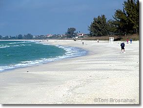 Nokomis Beach Venice Florida Nokomis Beach Is Locally