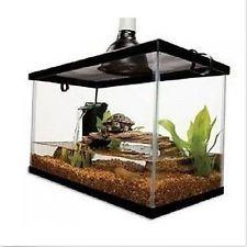 Reptile Starter Kit Terrarium Habitat Setup Aquarium Tank Filter
